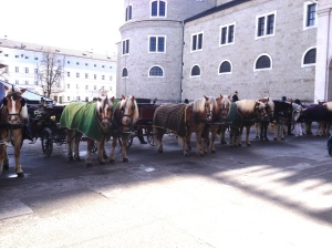 salzburg, austria, europe, horse and carriage, tours, things to do