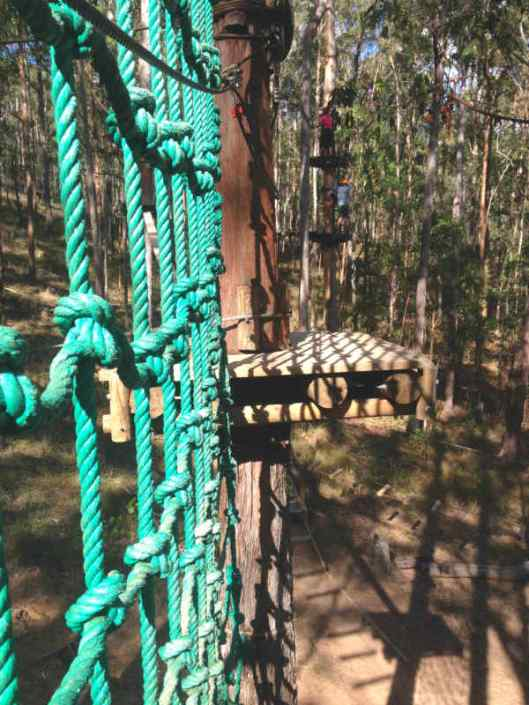 Tree Top Challenge Gold Coast