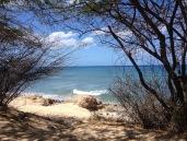 Best beaches in Oahu