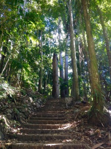 Gold Coast Hiking Mount Warning
